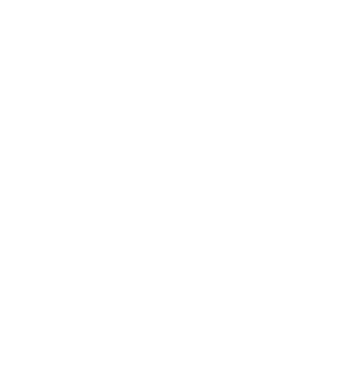 Southern Concierge Customized Moving Solutions